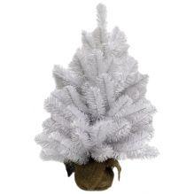 Ель Исландская  белоснежная 90 см в мешочке